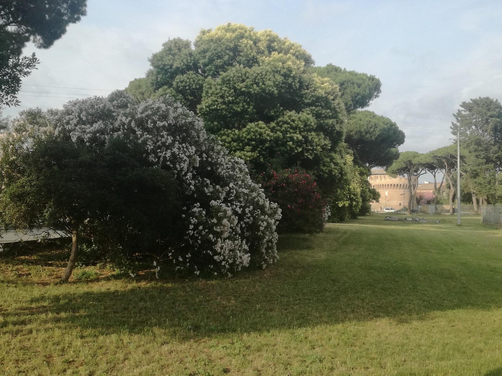Ostia Antica - Roma