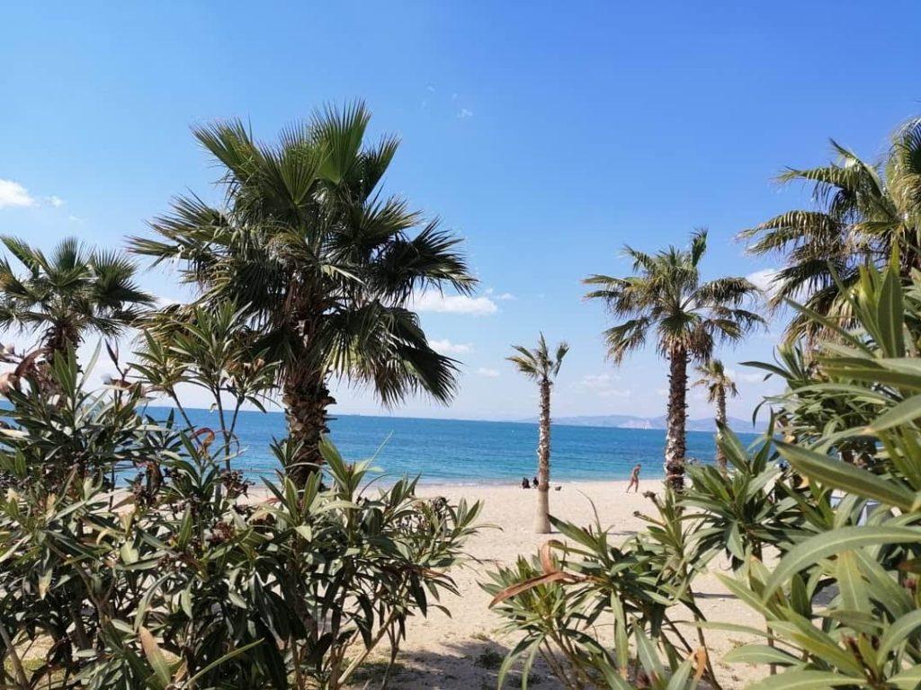 plaja 2