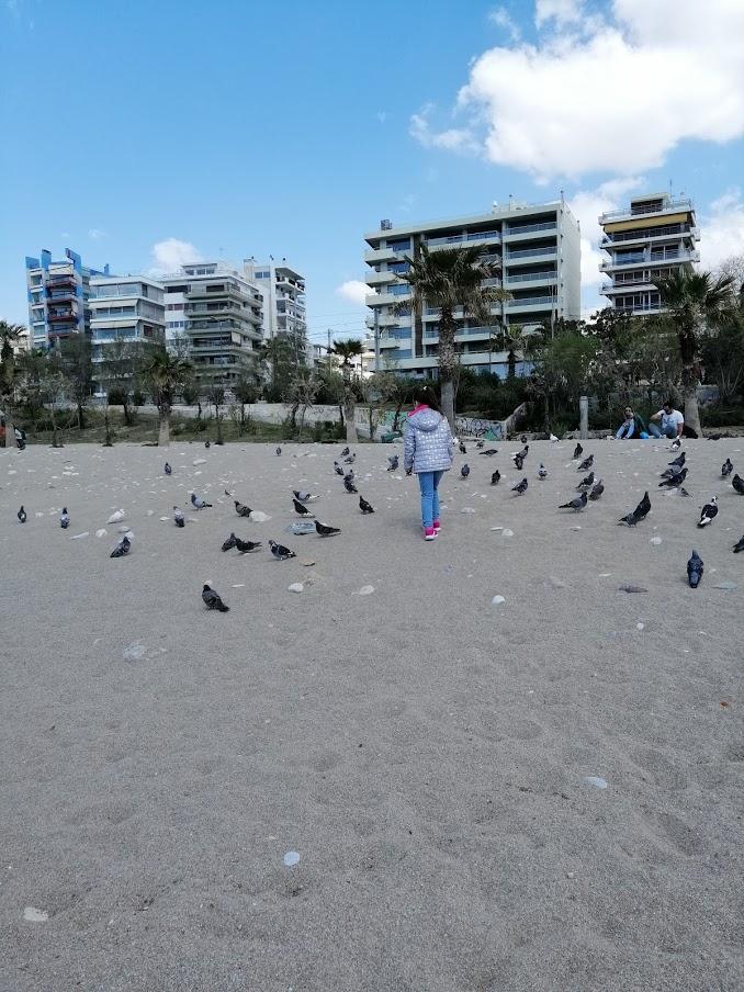plaja 5